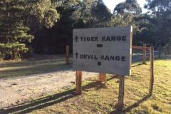 6. Tiger and Devil Sign