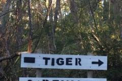 7. Tiger and Devil Start